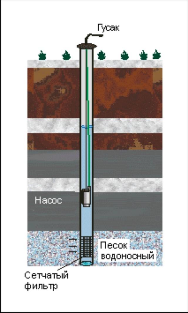 система автоматической подачи воды